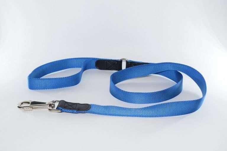 Blauwe hondenriem ring