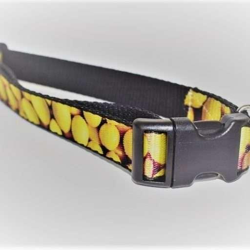 Hondenhalsband- citroen-linky- L
