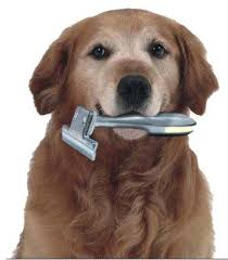 Felltrimmer-Large-voor Hond en kat-dierenverzorging